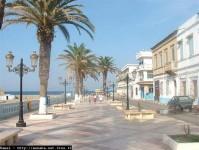 immobilier algerie